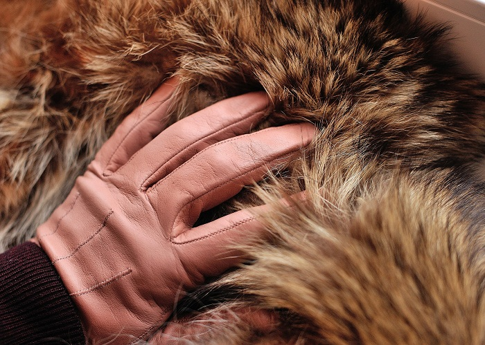 Dámsky kabát na jeseň